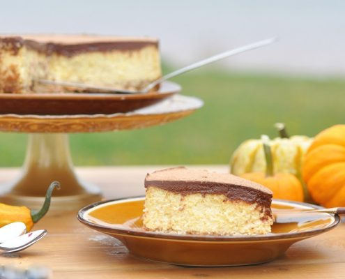 chocolate and pumpkin cheesecake - butternut