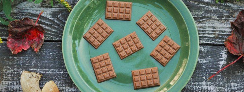 napolitains-chocolat aux champignons