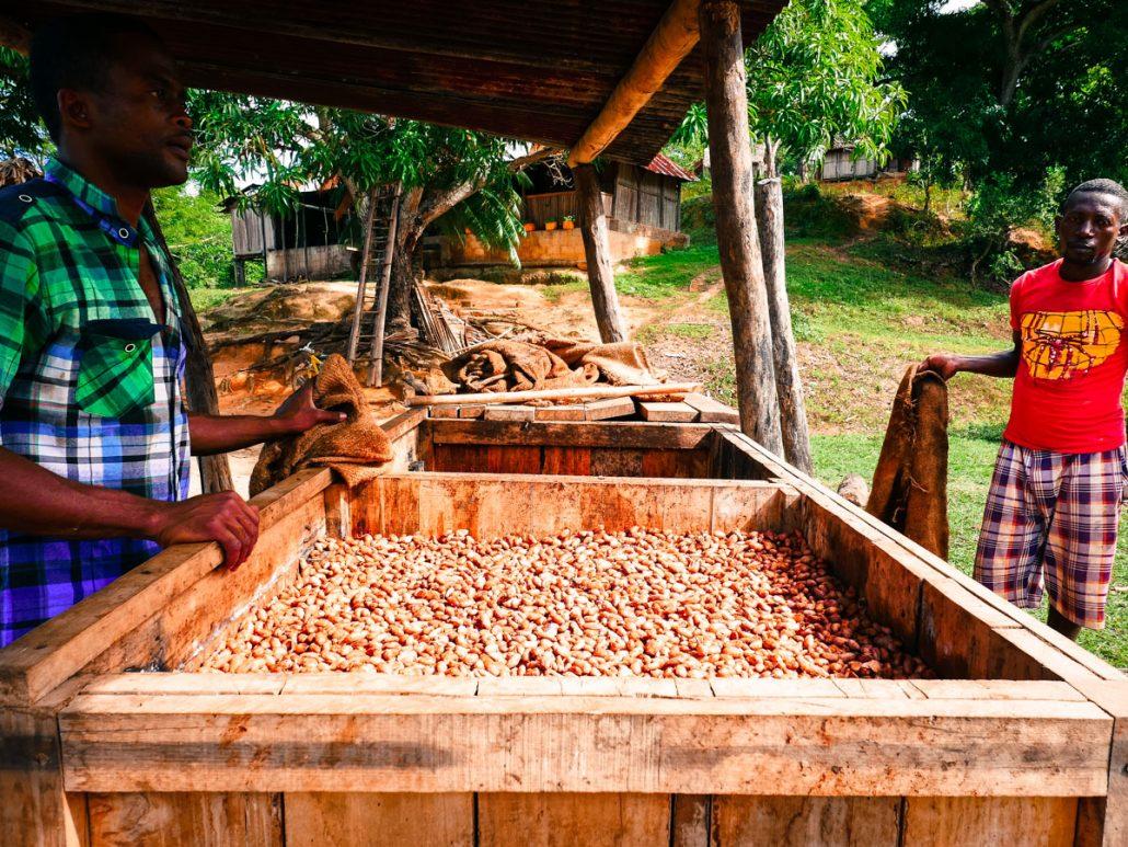 ferme de fermentation